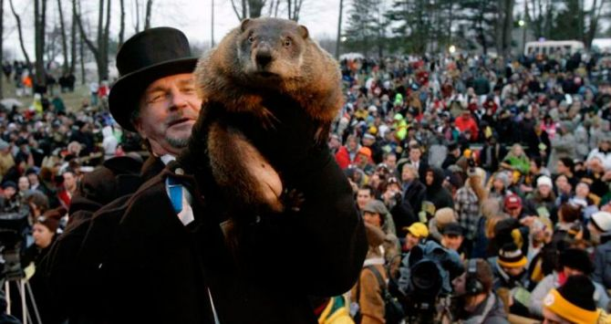 The groundhog Phil on February 2, 2017 after his forecast / EFE